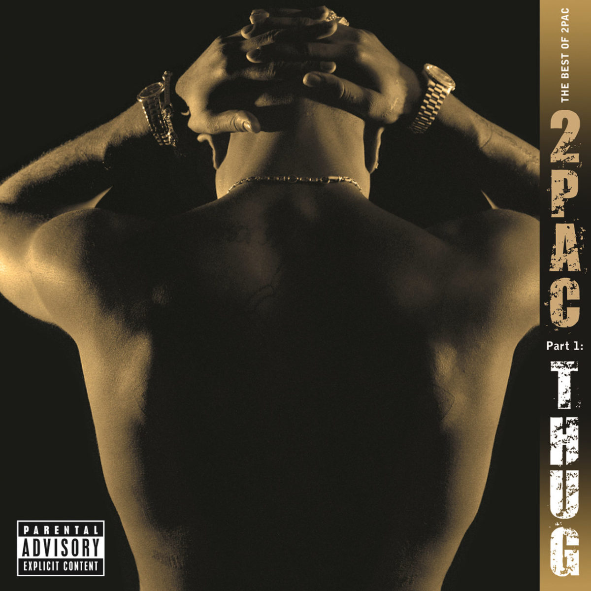 2Pac - The Best Of 2Pac Pt. 1 - Thug (Cover)